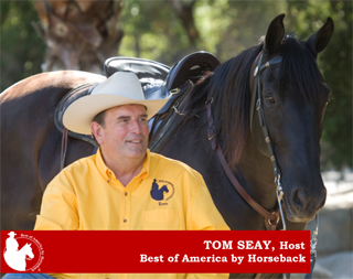 The Best Of America By Horseback