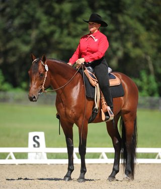 Western Dressage: Understanding Basic Level Tests 3 & 4