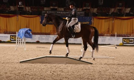Kelsey Parisi And Indian Rain Dance Win A Home For Every Horse's Equine Comeback Challenge At Pennsylvania National Horse Show