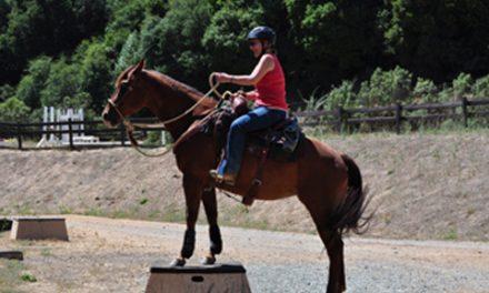 The Mature Rider
