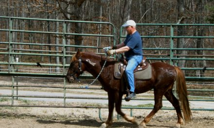 Best Of America By Horseback 2 – The Mexico To Canada Ride Begins