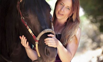 Horsemanship – Part II