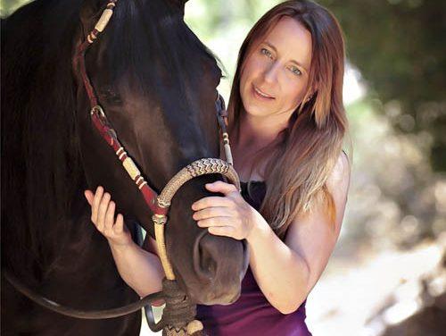 Hand Feeding Horses
