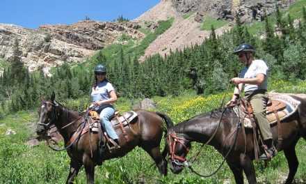 High Country Exploring: Ride Snowbird Utah's Wild Beauty