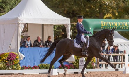 FEI Classics™: Michael Jung Strikes Out In Front At Pau