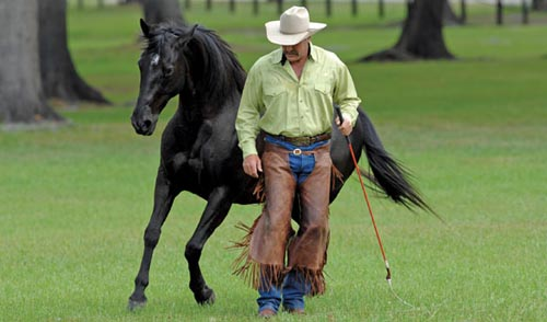 Natural Horsemanship Pioneer Pat Parelli Saddles Up For 2011 Road To The Horse Legends