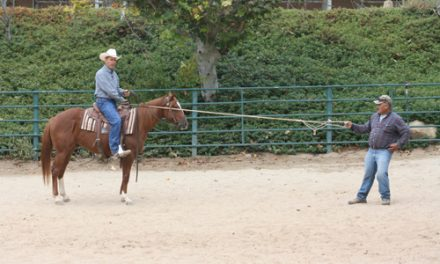 Teaching Your Horse To Handle A Rope – Part II