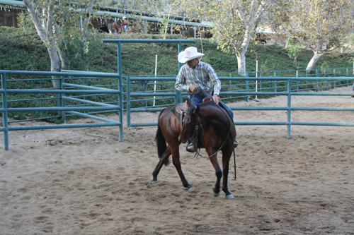 From Sour To Sweet – Fixing The Barn, Gate, Or Buddy Sour Horse