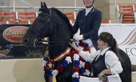 Susan Bouwman-Wind Claims Custom Saddlery MVR Award At International Friesian Show Horse World Championships