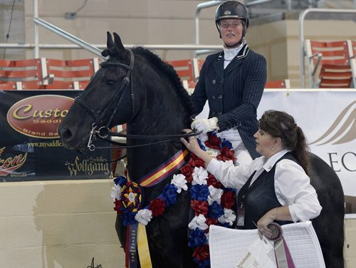 Susan Bouwman-Wind Claims Custom Saddlery MVR Award At International Friesian Show Horse World Championships