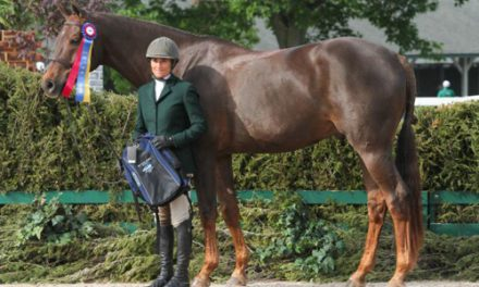 Jennifer Alfano And Havens Schatt Share Grand Championship At Kentucky Spring Classic