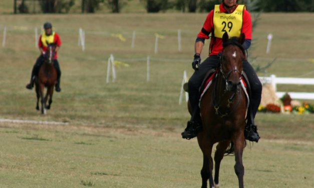 Canadian Endurance Team Finishes Seventh At World Equestrian Games