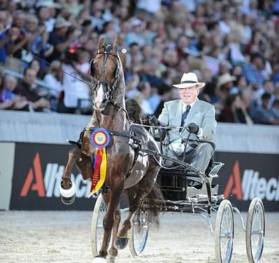 The 2010 Alltech FEI World Equestrian Games