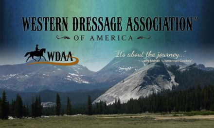 Bringing Classical Dressage To The Western Horse