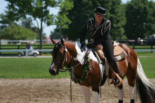 Western Dressage: A Closer Look At Tack