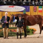 Junior Hunters Take Center Ring at The Pennsylvania National Horse Show
