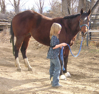 Three Things You Must Be Able To Do With Your Horse