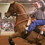 Personality and How It Can Effect the Training of Your Horse – Part I
