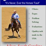 What to Consider When Looking For a Horse