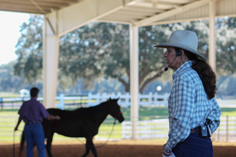 Why two-handed reining and the one-rein stop calms your horse