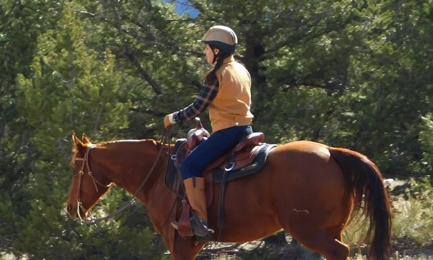 Riding the Hot Horse on the Trail