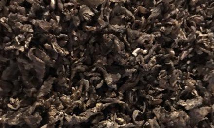 Feeding Beet Pulp