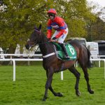 Famous Horses Who Bounced Back from Injury