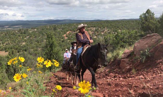 Safely Social Distancing by Horseback