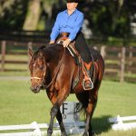 Western Dressage: Are You Ready to Show?