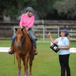 Western Dressage: Preparing for your Test