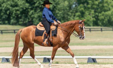 Western Dressage Benefits Any Horse